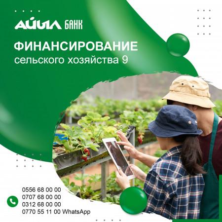 ОАО «Айыл Банк» начал выдачу кредитов по ФСХ-9